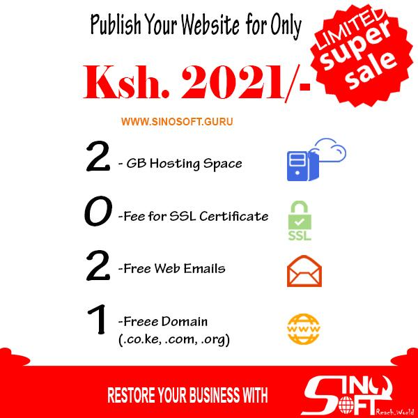 2021 Domain Hosting Package -Sino Soft